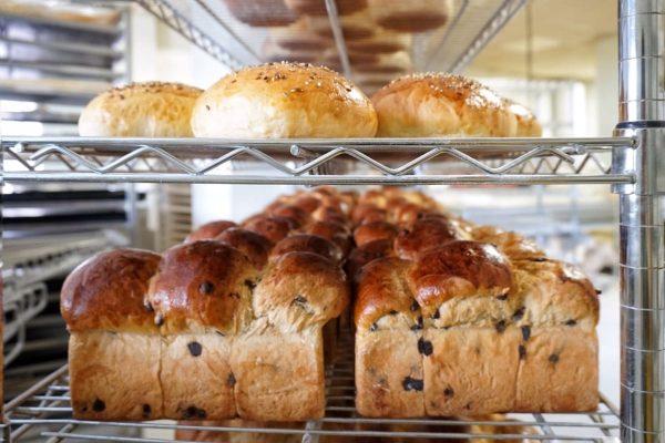 Ricos panes que harán las delicias de los más panaderos